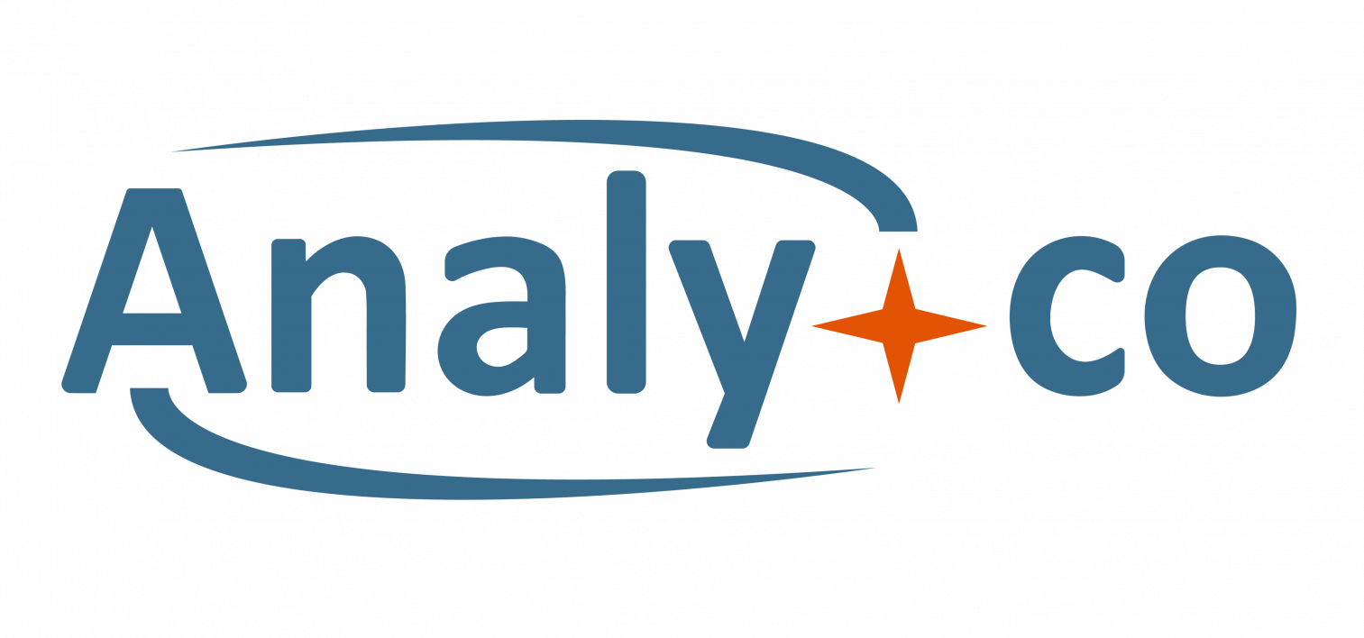 gallery/Logo Analy-co - Grand format